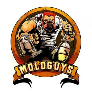 moldguys logo