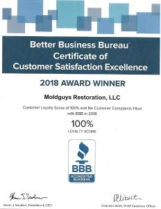 moldguys bbb certification