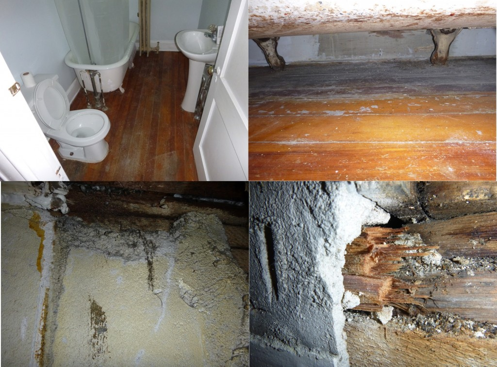prvidence RI Mold Removal & Water Damage