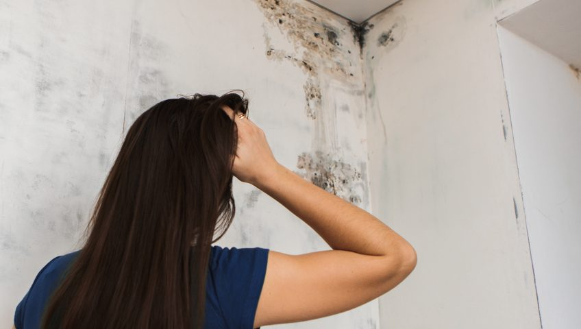 Woman looking at mold on her wall
